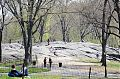 Central Park. Faule New Yorker liegen in der Sonne.