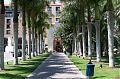 Palmensäulengang